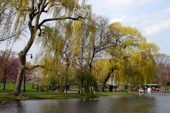 Boston común y jardín público, los E Imágenes de archivo libres de regalías