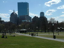 Boston common 2. A shot of boston common, with the boston skyline in view royalty free stock image