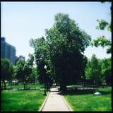 Boston Common, Boston, Massachusetts Stock Images