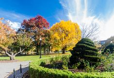 Boston Common in fall Stock Photo