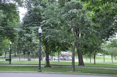 Boston Ma, 30th June: Boston Common Park in Downtown Boston in Massachusettes State of USA Royalty Free Stock Images