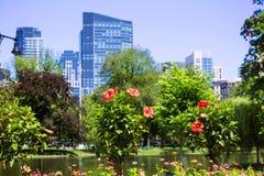 Boston Common park gardens and skyline. In Massachusetts USA stock photo