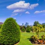 Boston Common park gardens and skyline Stock Image
