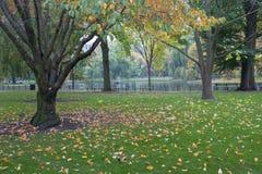 Boston Common Public Garden Royalty Free Stock Photo