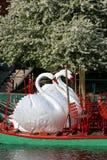 Boston Common and Public Garden, USA Stock Photography