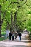 boston commonträdgård offentliga USA Arkivbilder