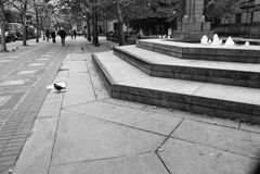 Boston Copley kwadrat Obraz Stock