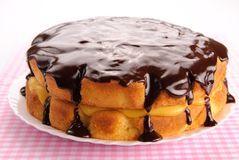 Boston cream pie Stock Image