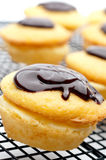 A Boston Cream Pie Cupcake Stock Images