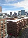 boston gator Royaltyfria Bilder