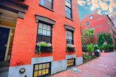 Boston gator för fyrkulle Arkivbild