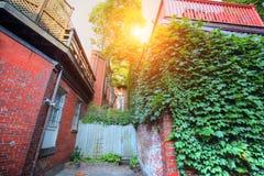 Boston gator för fyrkulle Royaltyfria Bilder