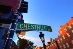 Boston gator för fyrkulle Royaltyfri Bild