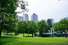 Boston green. Beautiful down town park Royalty Free Stock Photos