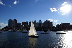 Free Boston Harbor Downtown Skyline And Sailboat Stock Photography - 3208582