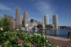 Boston harbor skyline. Scenic view of Boston city harbor and skyline with flowers in foreground, Massachusetts, U.S.A Stock Photos