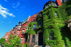 Boston Historic Housing. With ivy covered walls at back bay royalty free stock photo