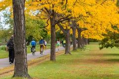 Boston im Herbst, USA Stockbild