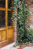Boston Ivy Crawling Up Brick Wall Outside Rustic Door. Boston ivy crawling up a brick wall around a rustic wooden door royalty free stock image
