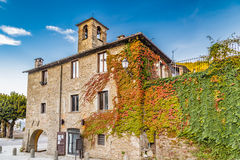 Boston Ivy in mountain village in Tuscany Royalty Free Stock Photos
