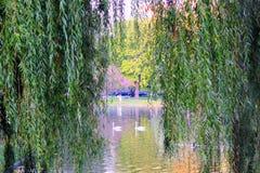 Boston, mA Parque Foto de archivo libre de regalías