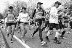 Boston Marathon 2013 Royalty Free Stock Image