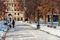 BOSTON, MASSACHUSETTS - JANUARI 04, 2014: Het Park van Boston Koude Sneeuw de Winterdag Stock Fotografie