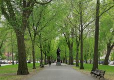 Boston, Massachusetts. General John Glover Monument along the Commonwealth Avenue Mall royalty free stock images