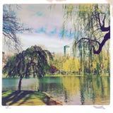 Boston park scene Royalty Free Stock Photo