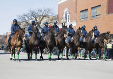 Boston Police on horseback, St. Patrick's Day Parade, 2014, South Boston, Massachusetts, USA Stock Photo