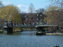 Boston public garden 1. A shot of the footbridge in Boston's public gardens Royalty Free Stock Photography