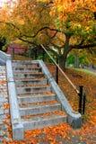 Boston Public Garden. Autumn in Boston Public Garden Royalty Free Stock Photography