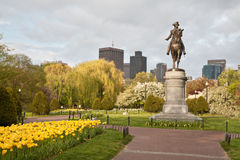 Free Boston Public Garden Royalty Free Stock Images - 23179069