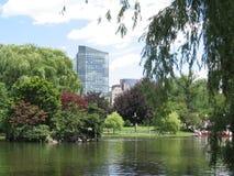 Boston Public Garden. Lagoon in the summer Royalty Free Stock Photos