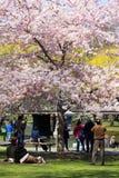 Boston Public Garden Stock Photography
