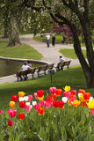 Boston Public Garden in the Spring Stock Images