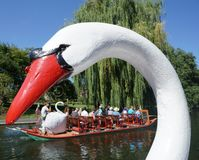 Boston Public Garden Swan Boat Stock Photo