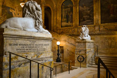 Boston Public Library. Lions and stairs in Boston Public Library Royalty Free Stock Images