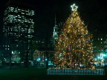 Boston's Christmas Tree. Boston's Official Christmas Tree located in the Boston Commons with the park street chusrch in the background and an office building Stock Photo