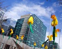 "Boston Seaport daffodils. Public art installation ""20 Knots: Daffodils for Boston.""  The twenty-foot-tall nylon daffodils in the Seaport area are stock photography"