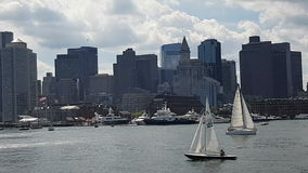 Boston Skyline and Financial District. stock footage