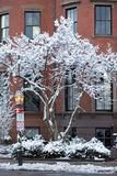 Boston Back Bay in the winter. royalty free stock photography