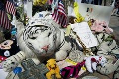 Boston strong stuffed tiger in memorial Stock Photos