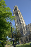 Boston stump, UK Royalty Free Stock Images