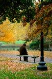 boston trädgårds- allmänhet royaltyfri bild