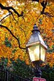 boston trädgårds- allmänhet Arkivfoton