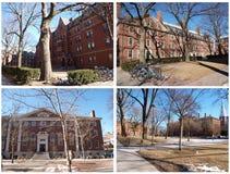 Boston-Universität Stockfotos