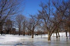 Boston vinter royaltyfri foto