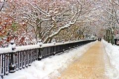 Boston-Winter Lizenzfreies Stockfoto