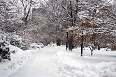 Boston-Winter Stockfotos